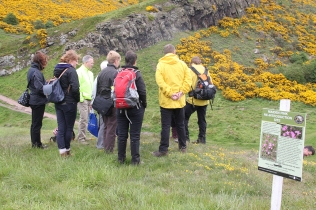 Exploring Holyrood Park